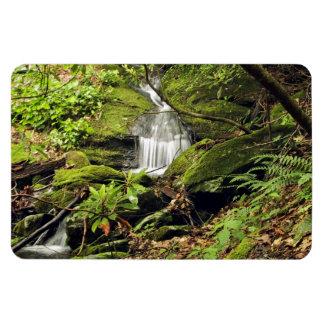 Waterfall through fern trees rectangular photo magnet