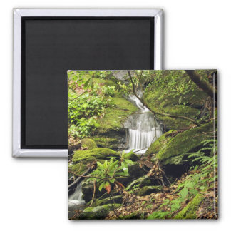 Waterfall through fern trees square magnet