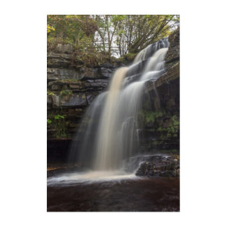 Waterfalls in Autumn Acrylic Wall Art