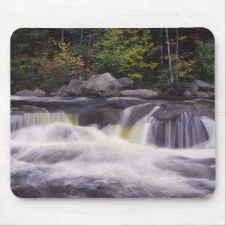 Waterfalls, Kancamagus Highway, White Mouse Mat