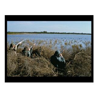 Waterfowl Hunt Postcard
