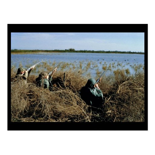 Waterfowl Hunting Post Card