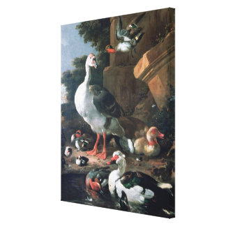 Waterfowl in a classical landscape, 17th century canvas print