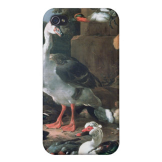 Waterfowl in a classical landscape, 17th century case for iPhone 4
