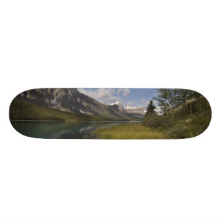 Waterfowl lake along the Icefields parkway, Custom Skate Board