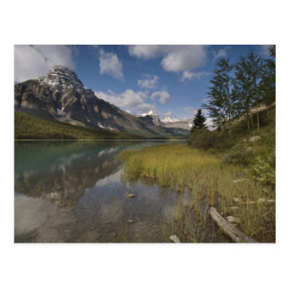 Waterfowl lake along the Icefields parkway, Postcard
