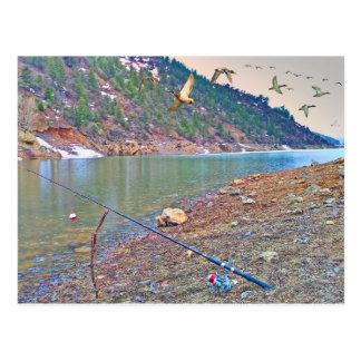 Waterfowl while fishing postcard