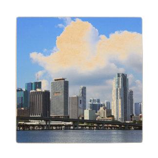 Waterfront view of Miami Wood Coaster