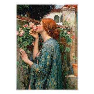 Waterhouse The Soul of the Rose Print Art Photo