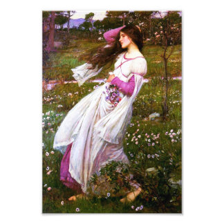 Waterhouse Windflowers Print Photo Art