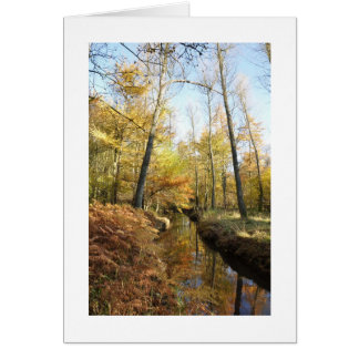 Waterhouses Autumn Woods Card