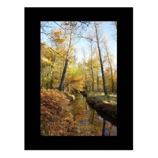 Waterhouses Autumn Woods Postcard
