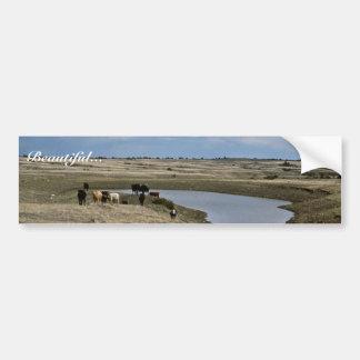 Watering Hole Bumper Sticker