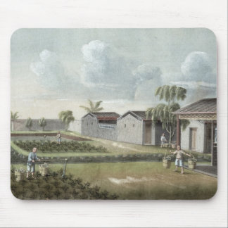 Watering tea plants (w/c on paper) mouse mat