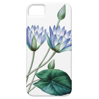 Waterlilies vintage illustration of Redoute iPhone 5 Case
