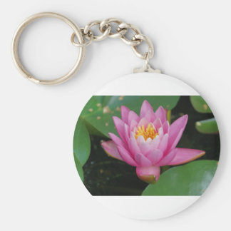 Waterlily flowers in a pond basic round button key ring