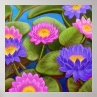 Waterlily Garden Poster