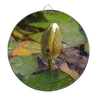 waterlily in the lake dartboard