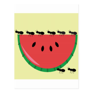 Watermelon And Ants Postcard