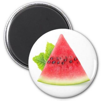 Watermelon and mint magnet