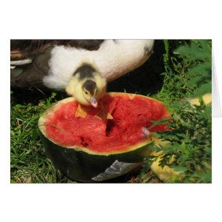 watermelon anyone? card