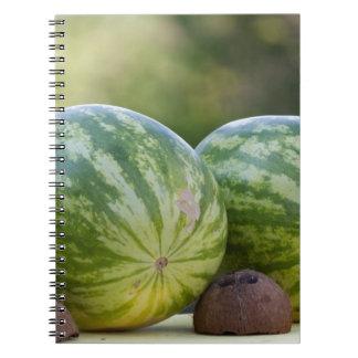 watermelon in summer notebook