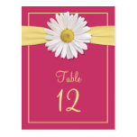 Watermelon Pink Shasta Daisy Table Cards Post Cards