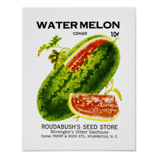 Watermelon Seed Packet Label Poster