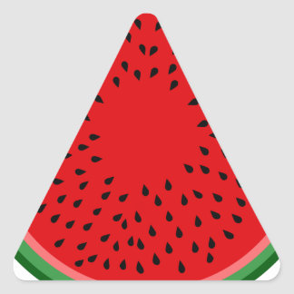 Watermelon Triangle Sticker