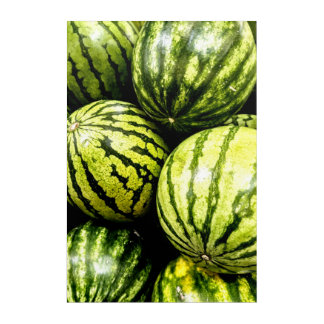 Watermelons Acrylic Wall Art