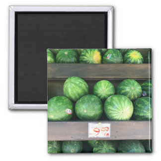 Watermelons for Sale Corner Bodega NYC Photograph Magnet