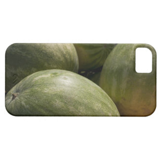 Watermelons iPhone 5 Cases