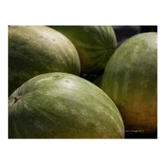 Watermelons Postcard
