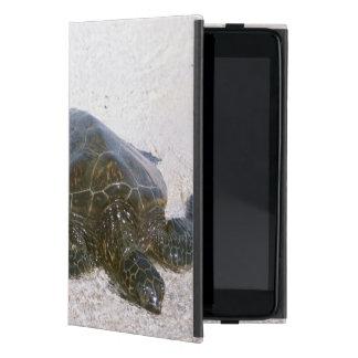 Water's edge case for iPad mini