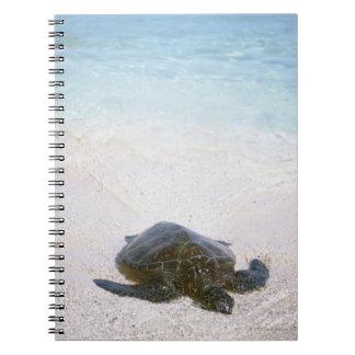 Water's edge notebook