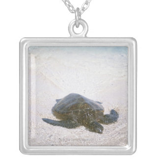 Water's edge silver plated necklace
