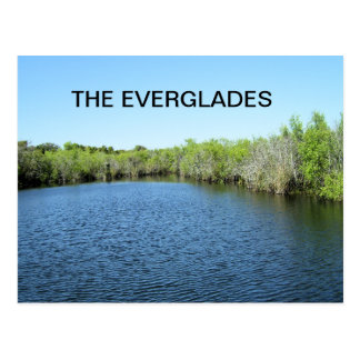 WATERS OF THE EVERGLADES POSTCARD