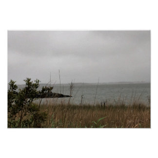 Waterscape with Grasses Poster