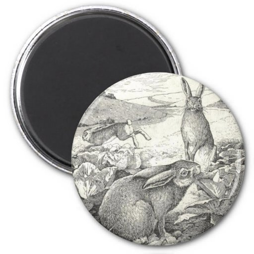 Watership Down Magnets