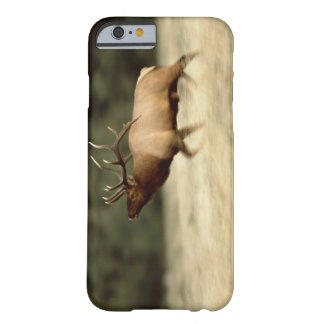 Waterton Lakes National Park, Alberta, Canada, a Barely There iPhone 6 Case