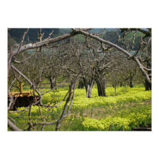 Watsonville Orchard Print - Select Your Frame