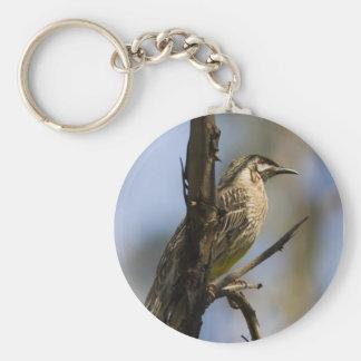 Wattle Bird keychain
