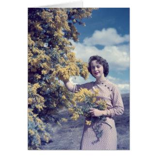 Wattle in Canberra - retro Cards