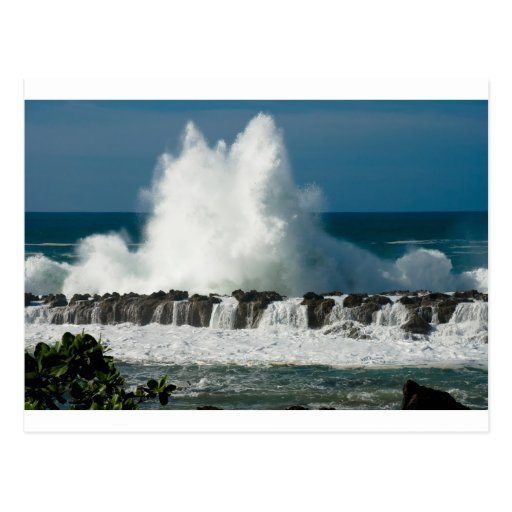 Wave Crashing over Shark's Cove Post Cards