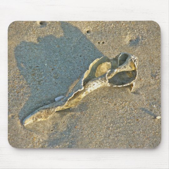Wave-Washed Shell Cape Cod Items Mouse Mat