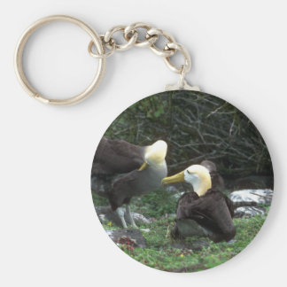 Waved Albatross In Courtship Key Ring