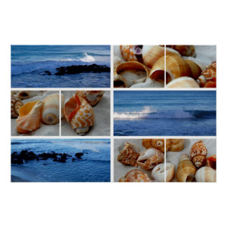 waves and shells i poster