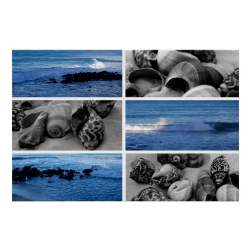 waves and shells ii poster