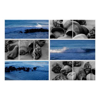 waves and shells iii poster