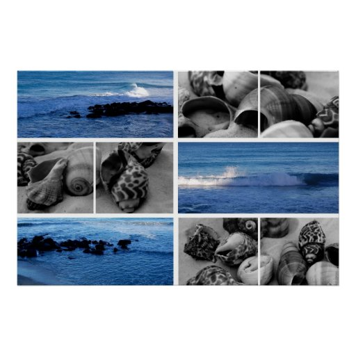 waves and shells iv poster